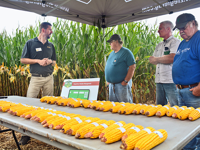 Todd Hesse (far left) of Ziegler Ag Products, shows farmers corn ears with good singulation (top row) and poor singulation. (Progressive Farmer image by Matthew Wilde)
