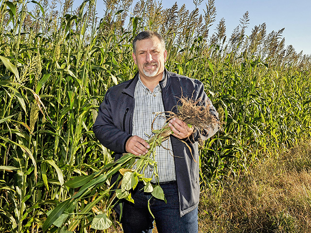 No-till practices plus cover crops benefit Rodney Rulon's corn yield by 5 to 12 bushels per acre and beans, 3 to 4 bushels per acre. (Progressive Farmer image by Mary Ann Carter)