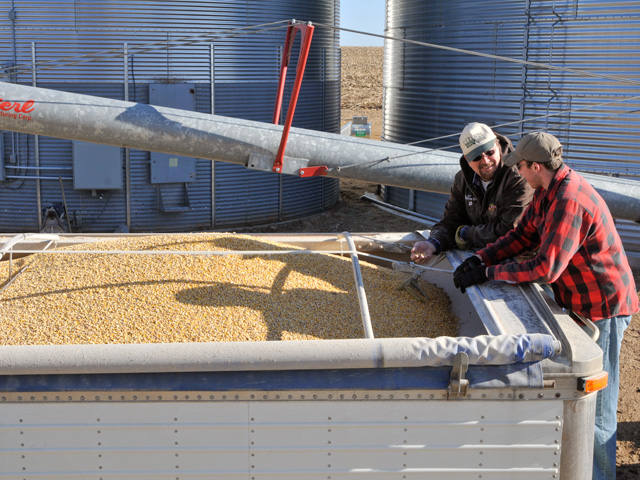 When hiring seasonal labor for your farm or business, it's a challenge to determine how we should classify and pay for the hours worked. (DTN/Progressive Farmer file photo)