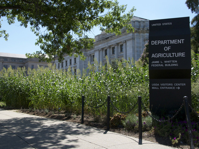 On Friday, USDA released tables prepared for its Agricultural Projections to 2028 report, which will be released in full in February. The report called for an increase in corn and wheat plantings and a decline in soybean acreage. (DTN file photo by Nick Scalise)