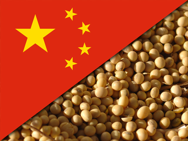 Chinese buyers planned ahead when it came to stocking up on soybean meal ahead of tariffs hitting earlier this month. (DTN file photo)