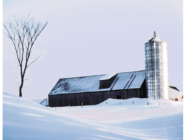 Much of the country is snowed in right now, but USDA's Agricultural Outlook Forum will look at early planting and farm income expectations. Federal Reserve surveys show concern for overall farm income, but land values remain steady in much of the Midwest and Plains states. (DTN file photo)