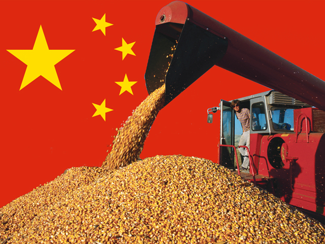 The trade volleys between the U.S. and China have caught the U.S. farmer in the middle. The White House ordered the U.S. Secretary of Agriculture to use his authority to protect farmers as these tariff disputes elevate. (DTN illustration by Nick Scalise)