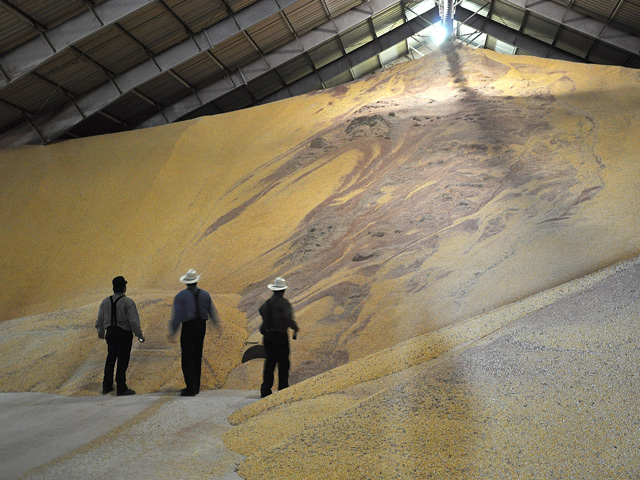 "Farmers need to ask themselves if storage is the best choice economically. If it is, they need to consider the varying expenses to storing corn on the farm, at the elevator or ""storing"" it using futures contracts and selling the cash grain. (DTN file photo by Katie Micik)"