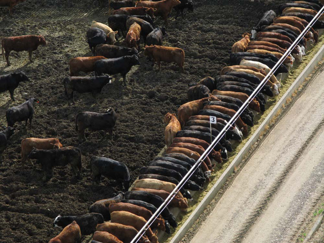 USDA was required by the 2008 farm bill to implement livestock marketing rules by June 2010. (DTN file photo)