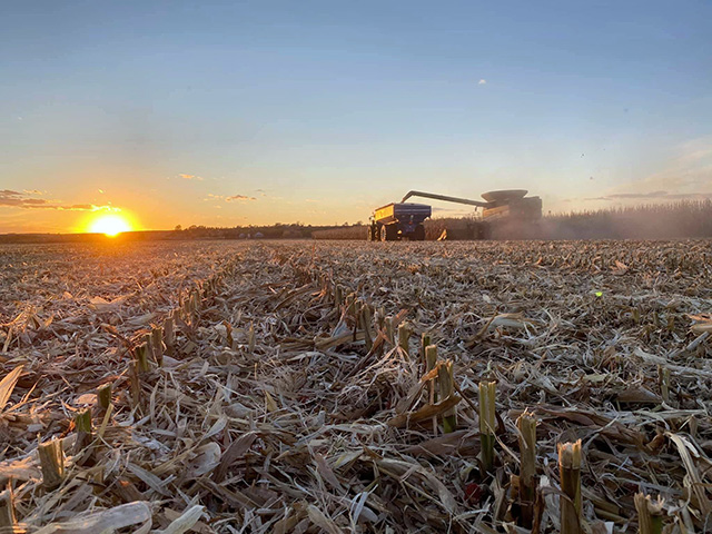 Pictured is corn harvest on the Quentin Connealy farm Tekamah, Nebraska. Connealy said harvest in his area was pretty fast and furious with only a couple of snow and drizzle days. Connealy said they started harvest on Sept. 21 and ended on Nov. 8 with their last field of corn. (Photo by Mike Camron)